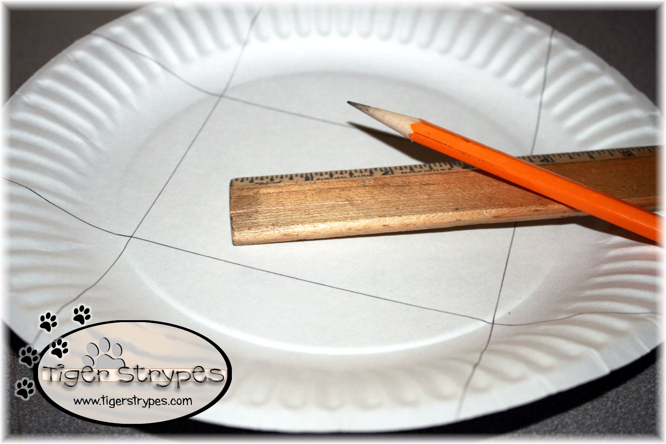 paper & Learn to Create a Paper Plate Gift Box #TigerStrypesBlog