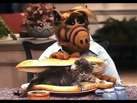 Does Alf Eat Cats